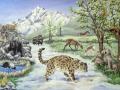 wildlife_on_the_tibetan_plateau
